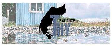 THY I BALANCE